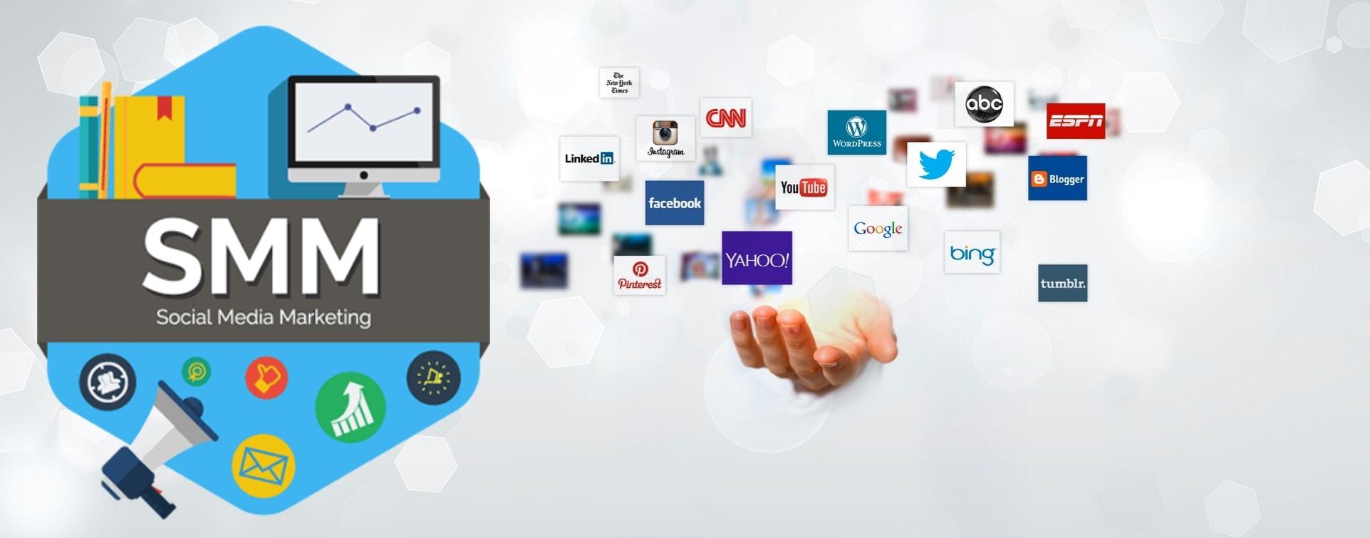Social Media Marketing SMM Lion Vision