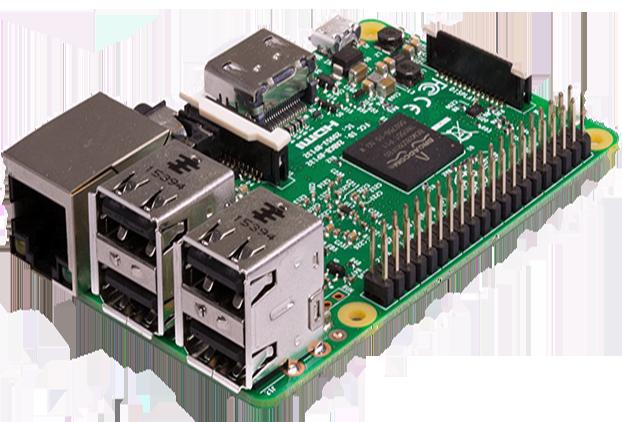 Raspberry Pi 2 lion vision